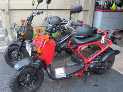 2009 Honda Ruckus Scooters — A Pair — His & Hers